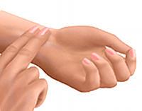 Cómo tomar el pulso a una persona